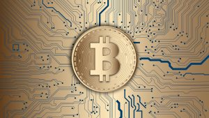 Wie Bitcoin Circuit private Contracs liest